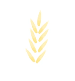 Protéines de blé